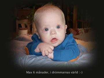 tankandemax3-copy.jpg
