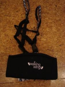 walking-wings4