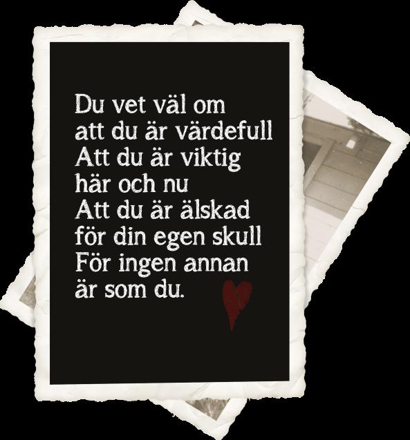 dikt kopiera