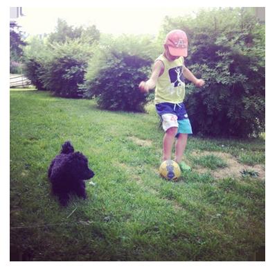 psplea fotboll