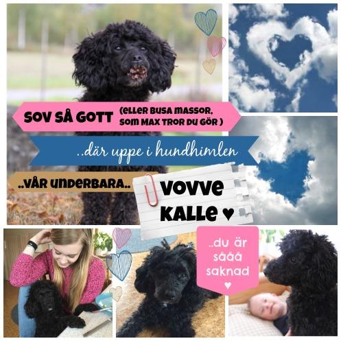 Kalle collage3