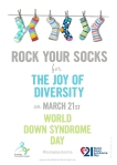 Rock your socks poster a3 kopiera