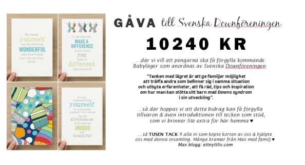 gåvan till svenska downföreningen kopiera